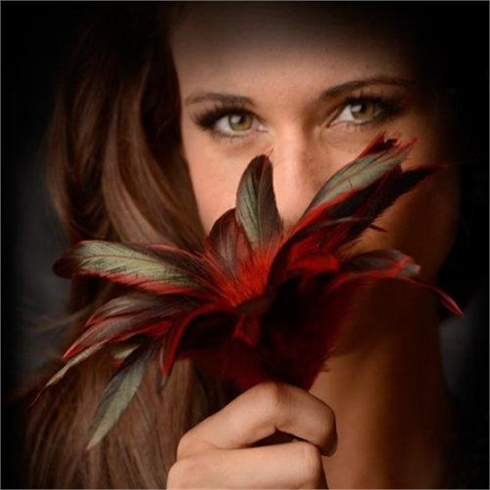 Plumas Scarlet Red
